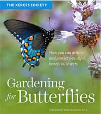 Gardening for Butterflies How You Can Attract and Protect Beautiful, Beneficial Insects