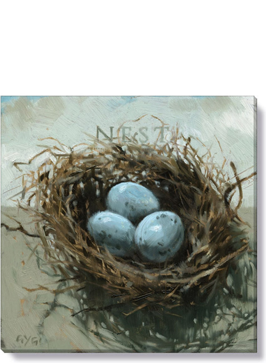 Bird Nest 9x9 Giclée Wall Art - Darren Gygi