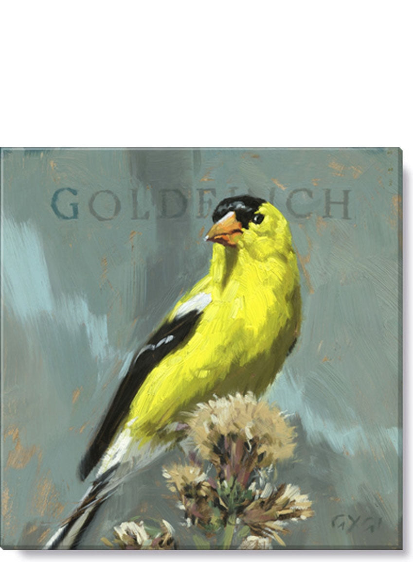 GOLD FINCH GICLEE WALL ART -Darren Gygi