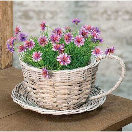 Plant Container Gray Willow Cup & Saucer