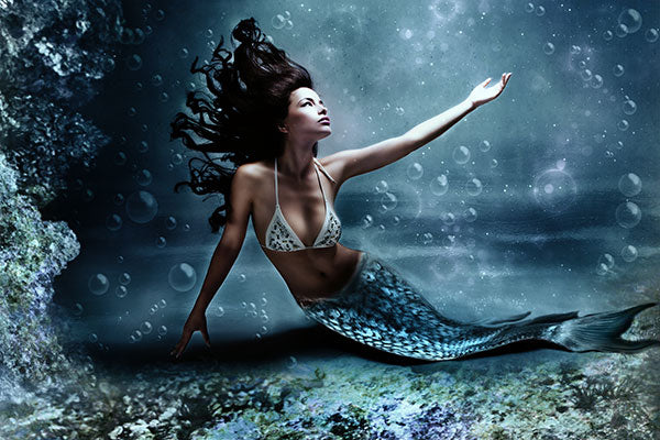 Mermaid Sightings and More