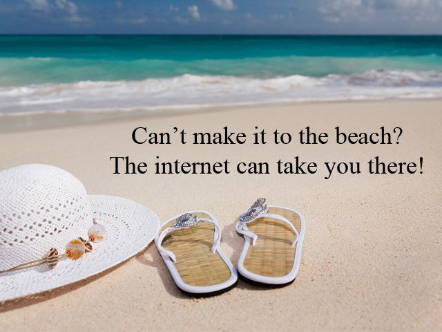 Can't make it to the beach? The internet can bring you there!