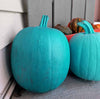 The Teal Pumpkin - More Than Just Coastal Autumn Decor