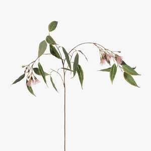 Eucalyptus Flowering - Pink - HartCo. Home & Body