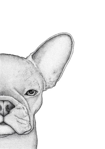 FREDDIE THE FRENCHIE - HartCo. Home & Body