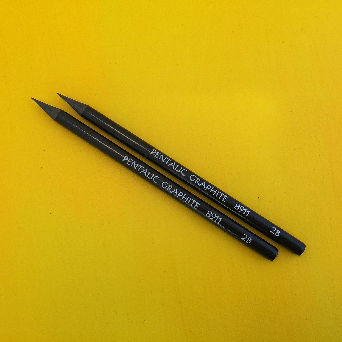Pentalic Woodless Graphite Pencil