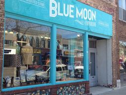 Blue Moon Emporium sells gifts, novelties and clothing   in downtown Appleton.(Photo: Maureen Wallenfang/Post-Crescent Media)