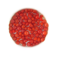 Pimento Red Opal Frit Balls FB0225 COE 90 Glacial Art Glass