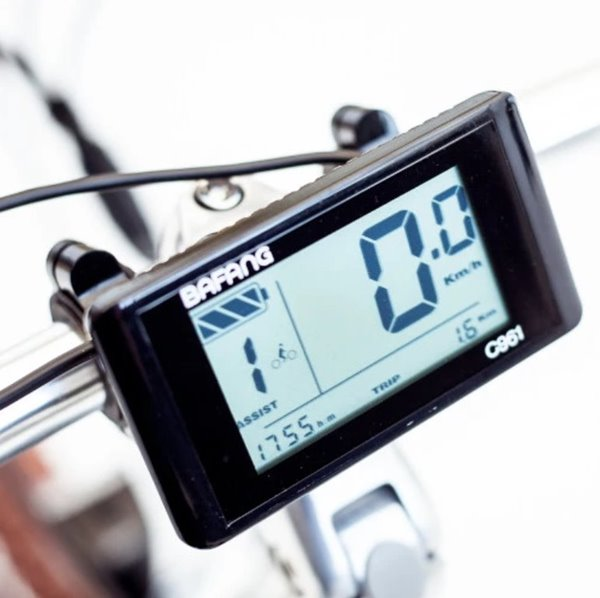 Biktrix Stunner-X 750W 48V Cruiser Fat Tire Mid-Drive Step-Through eBike LCD Display