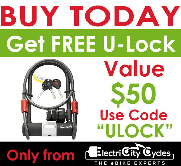 Buy Today and Get Free High Quality U-Lock