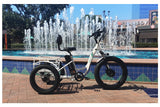 Emojo Caddy Pro Fat Tire 500W 48V Electric Tricycle Lifestyle3