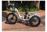Emojo Caddy Pro Fat Tire 500W 48V Electric Tricycle Lifestyle4