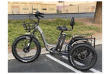 Emojo Caddy Pro Fat Tire 500W 48V Electric Tricycle Grey Left Side