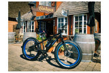 Emojo Wildcat Fat Tire 48V 500W Mountain eBike Lifestyle1