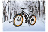Emojo Wildcat Fat Tire 48V 500W Mountain eBike Lifestyle3
