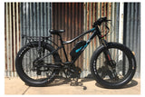 Emojo Wildcat Pro and Pro HD Fat Tire 48V 500W Mountain eBike Lifestyle2