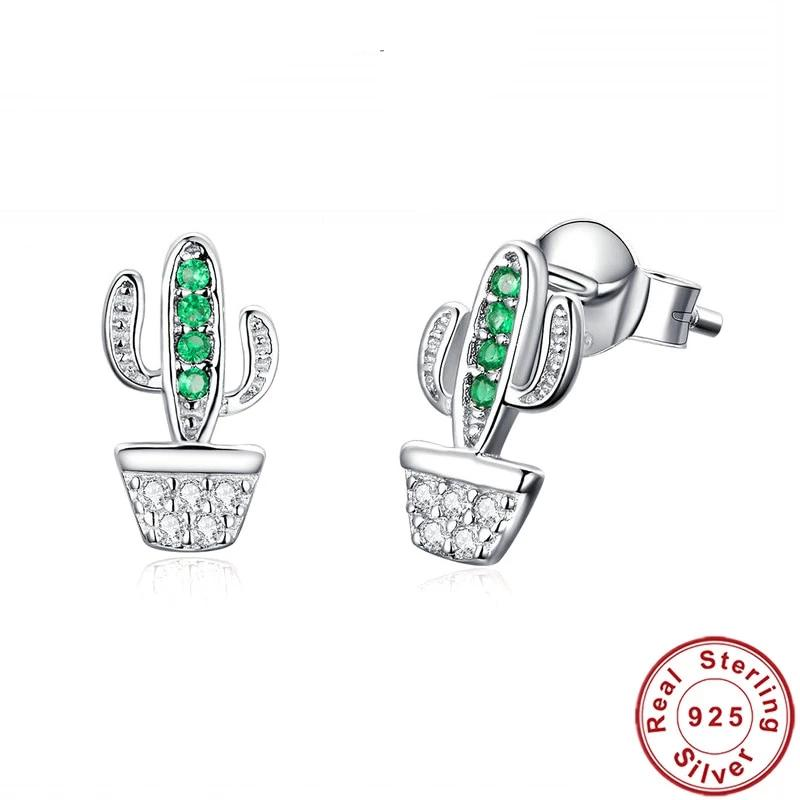 Cactus 925 Sterling Earning 280919
