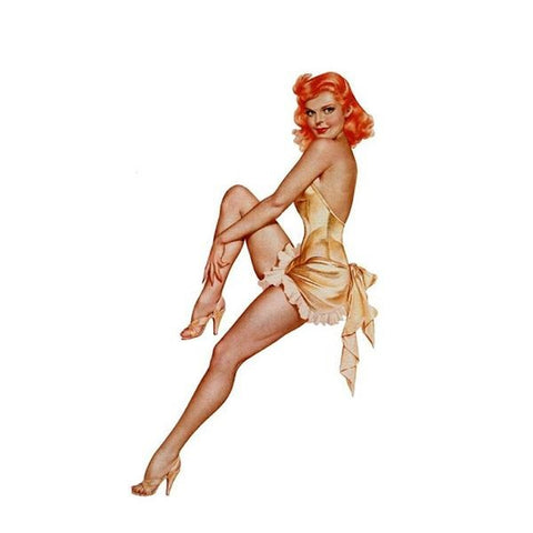 Elegant Pin Up Girl 220519