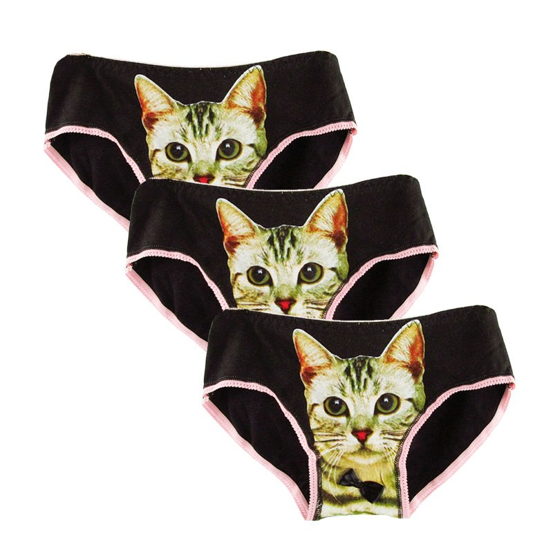 Lovely Cat Panties 3pcs Set