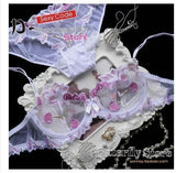 Flora Lace Embroidery Bra Panties Set 120918