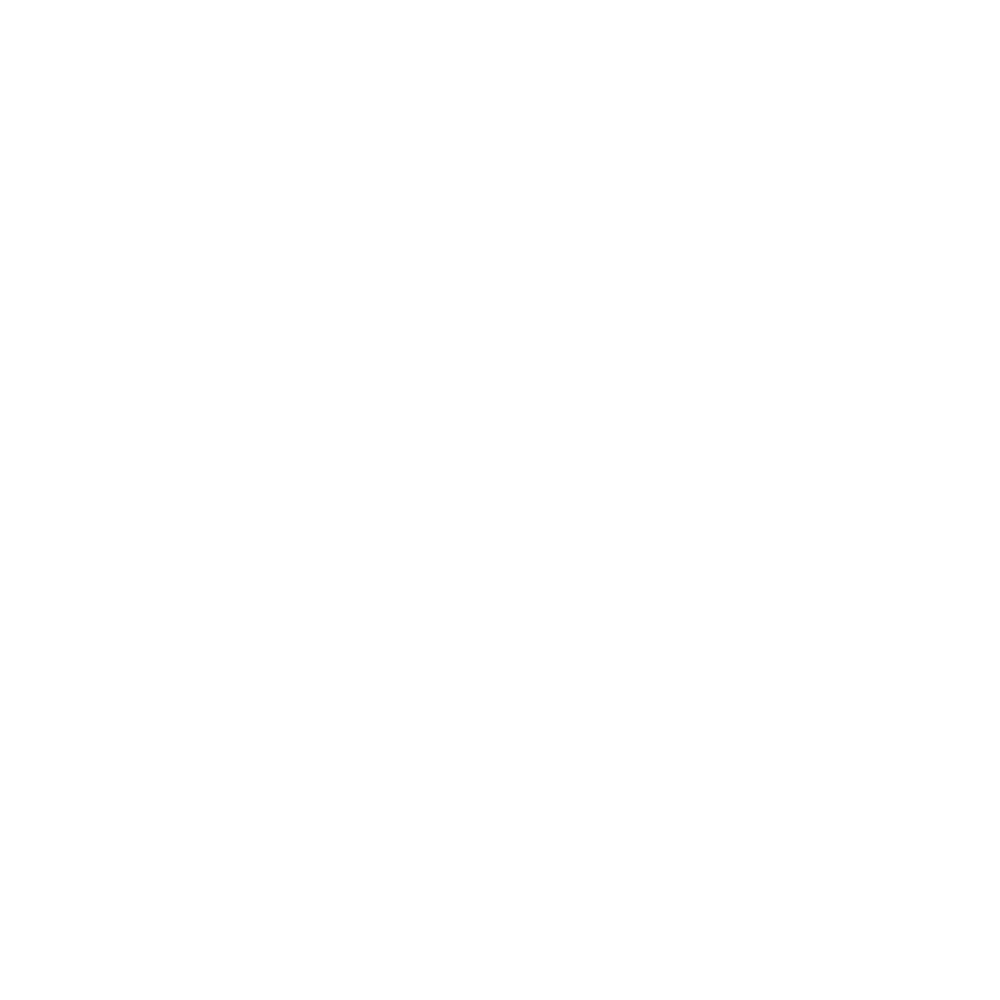 SAFE & SECURE <br>CHECKOUT