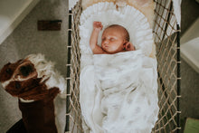 Photo Shoot - Newborn Portrait Session