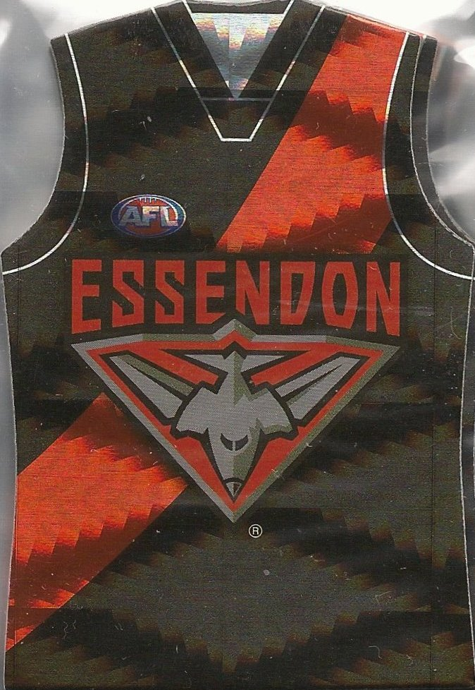 Essendon Bombers, Holofoil Guernsey Die-cut Team Set, 2010 Select AFL Prestige