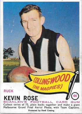 Kevin Rose, 1966 Scanlens VFL