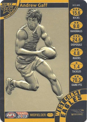 Andrew Gaff, Star Wildcard, 2013 Teamcoach AFL