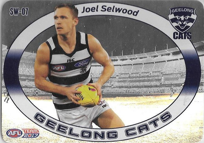 Joel Selwood, Star Wildcard, 2017 Teamcoach AFL