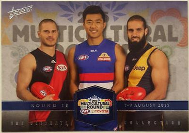 2015 Select AFL Ultimate Collection Multicultural Round, Tigers Bulldogs Bombers
