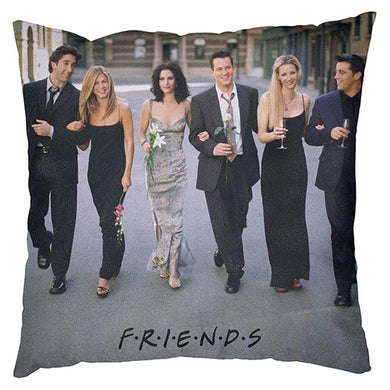 FRIENDS GROUP CUSHION