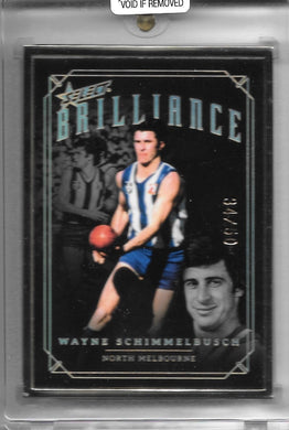Wayne Schimmelbush, 2020 Select AFL Brilliance