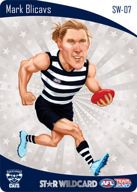 Mark Blicavs, Star Wildcard, 2020 Teamcoach AFL