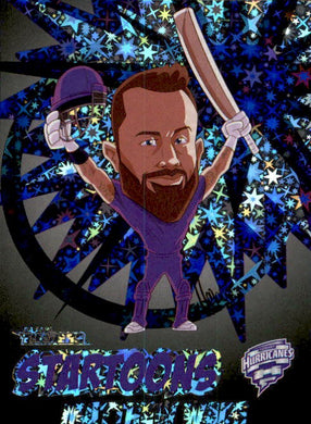 Matthew Wade, Black Startoons, 2020-21 TLA Cricket Australia and BBL