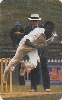 Michael Holding, 1979-80 Ardmona Cricket Series II
