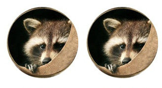 Racoon Cabochon Stud Earrings LSE552