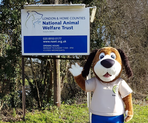 Dog mascot, mascot, easy paws, easy noodle mat, dog charity, animal charity, charity, national animal welfare trust, nawt