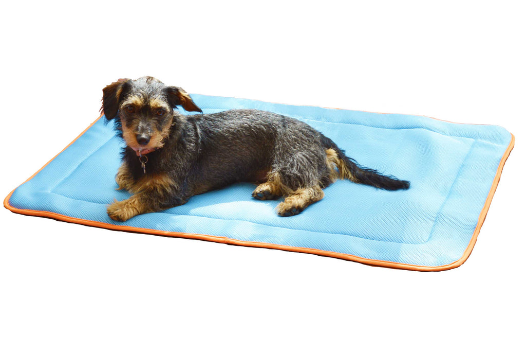 Easy Cooling Mat - Aqua