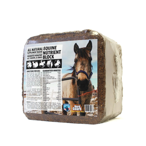 All-N-One Equine Block