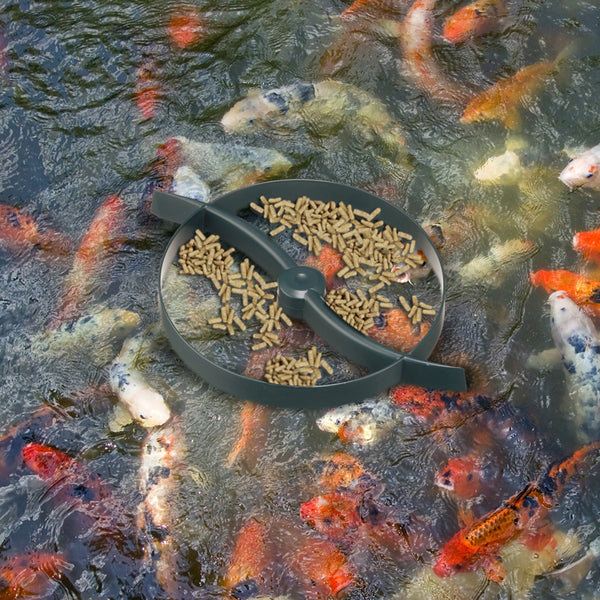 Laguna Floating Koi Fish Ring / Feeder