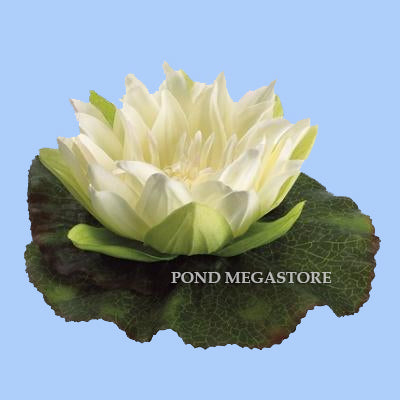 Imitation/Artificial Floating Waterlily and Lilypad, 6 1/2 inch Creamy-White