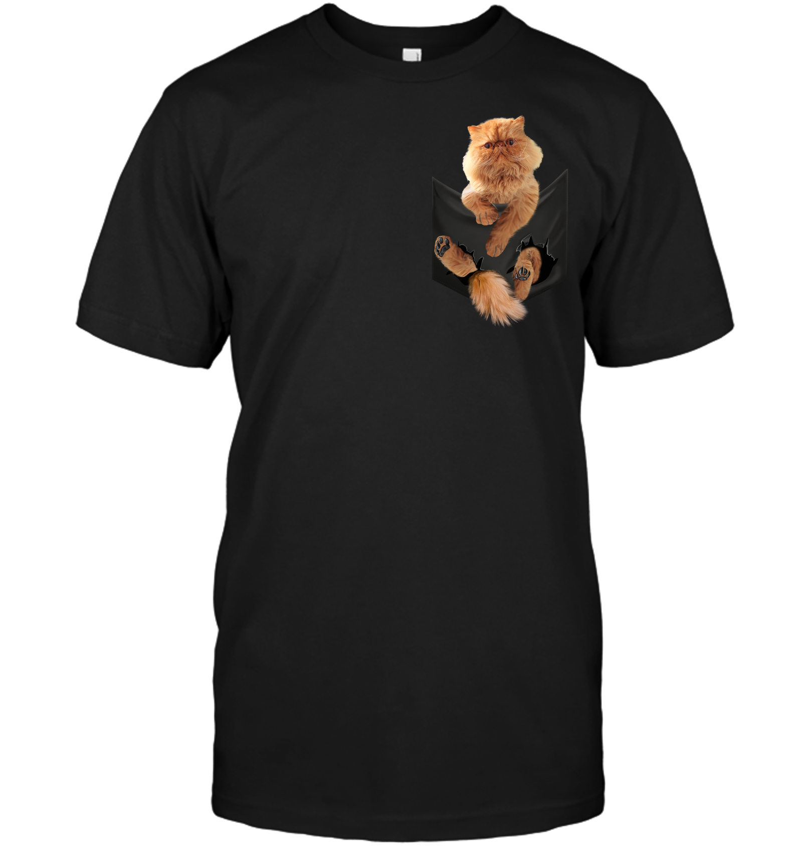 Persian Cat In Pocket T shirt