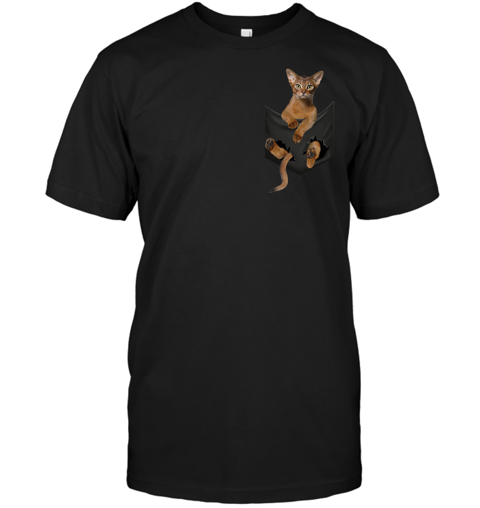 Abyssinian Cat Kitten In Pocket T-shirt