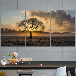Sunrise Tree Field Framed Canvas Home Decor Wall Art Multiple Choices 1 3 4 5 Panels