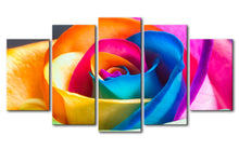 Beautiful Colorful Flower Five Piece Canvas - The Force Gallery