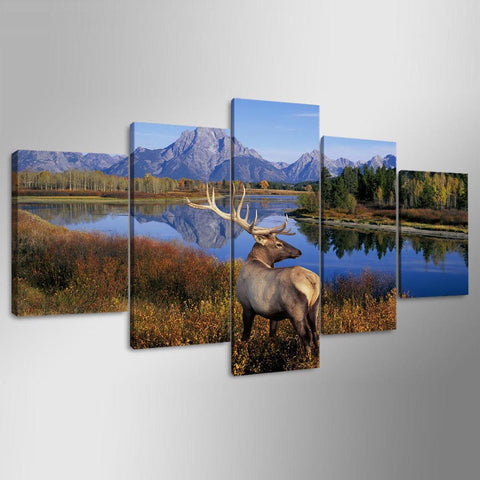 Elk by River Mountains Nature Wildlife Canvas - The Force Gallery