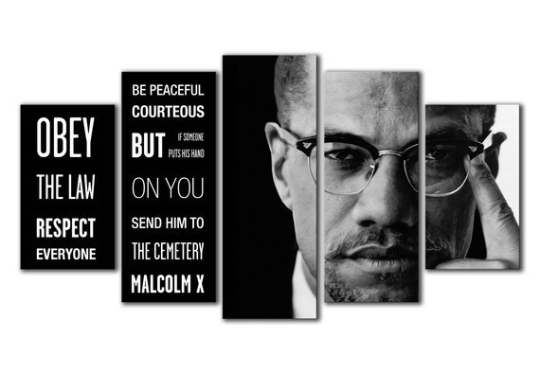 Malcom-X Quote Canvas - The Force Gallery
