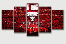 Chicago Bulls - The Force Gallery