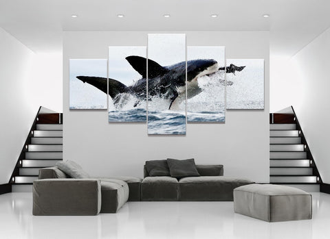 Great White Shark - The Force Gallery